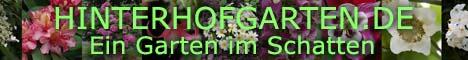 Erfahrungsbericht aus einem schattigen Hintgerhofgarten inmitten einer Großstadt. Über die Jahre hat sich hier eine blühende grüne Oase entwickelt. Mediterrane Kübelpflanzen, Kräuter für die Küche, Stauden, Rosen, Hortensien, ja sogar Obst gedeihen hier.